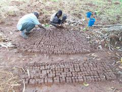 farmersfamiliesfutureuganda0051
